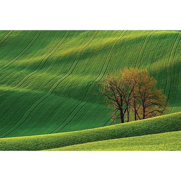 Rolling Green Mountains