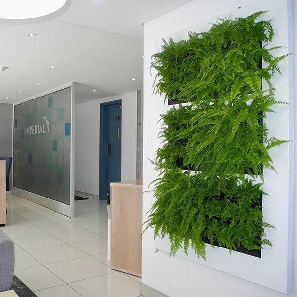 Wall Planter – Living Pictures