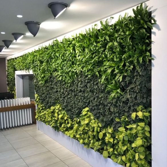 Revamped Green Wall
